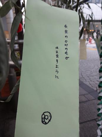 sensei2